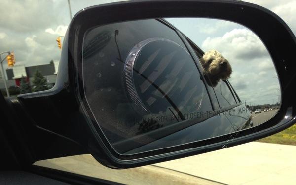 Farley Driving