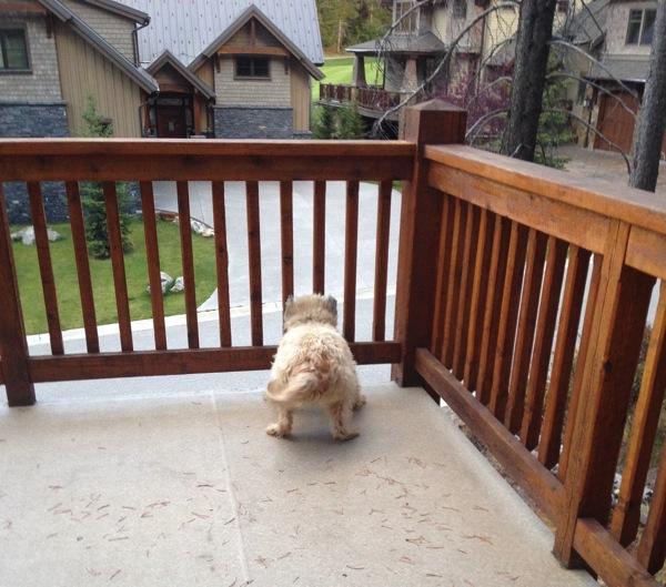 Farley on deck