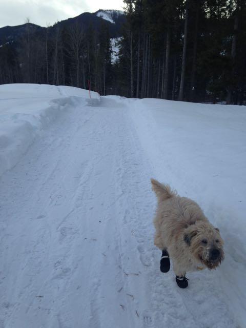 Farley Running 3