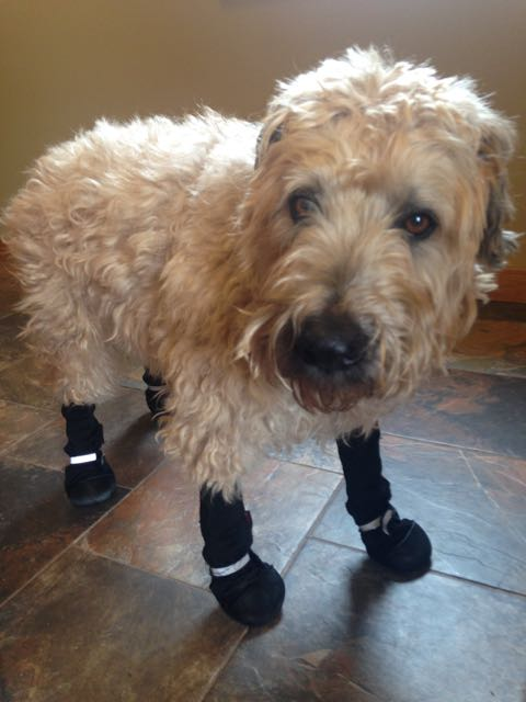 Farley Boots