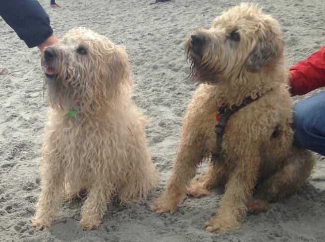 Farley and HIs sister