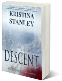 Descent 3D cover
