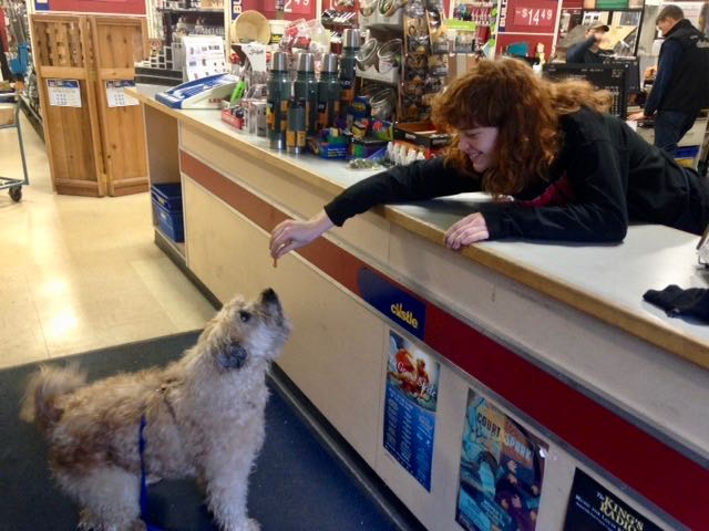 Farley at Hardware Store (1)