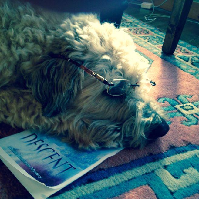 Farley reading DESCENT.jpg